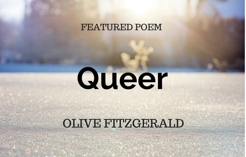 Queer by Olive Fitzgerald