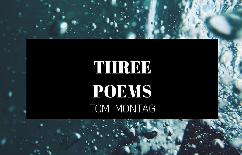 Darkness Holds, These Eternities, Loss by Tom Montag