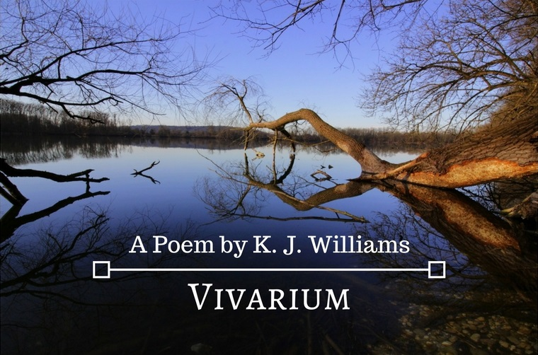 Vivarium by K.J. Williams