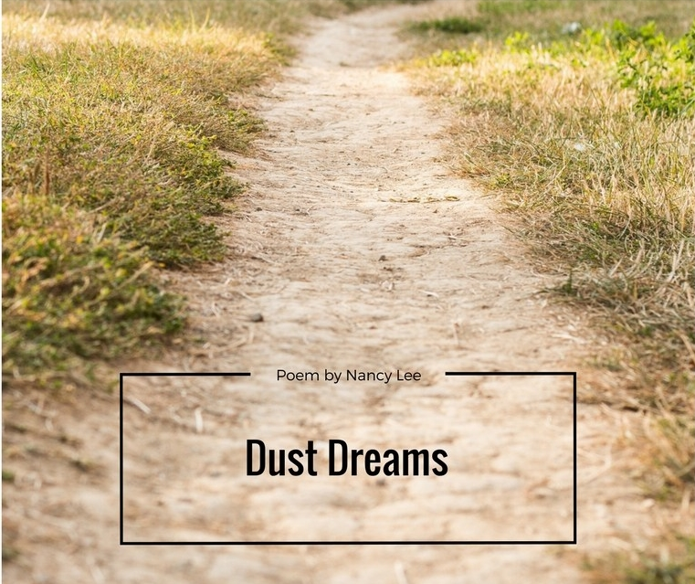 Dust Dreams by Nancy Lee